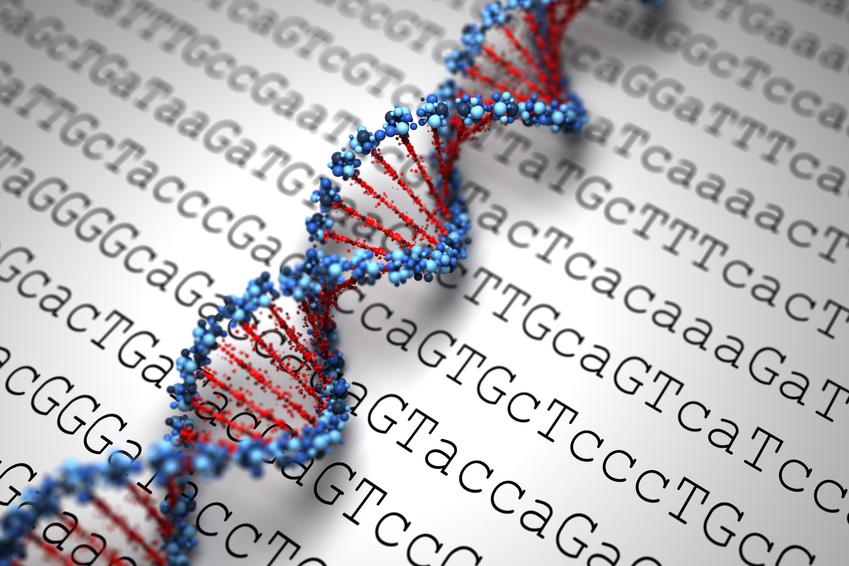 DNA computer programming