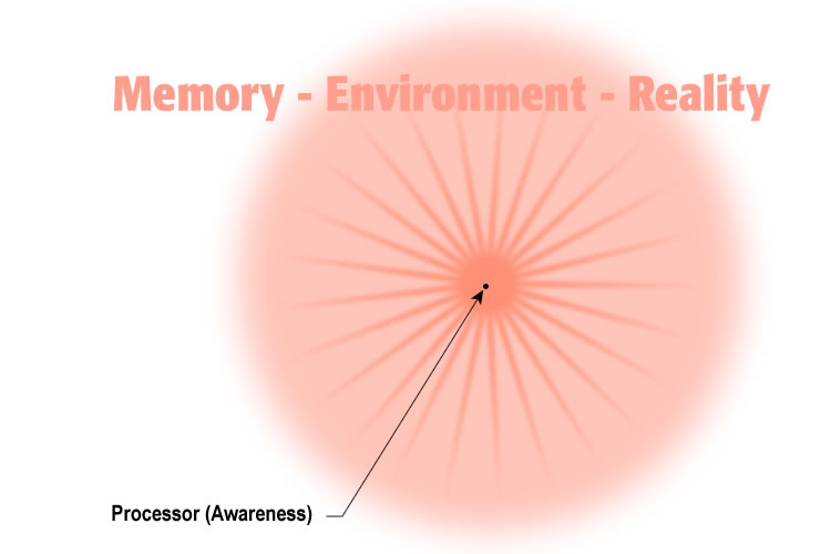 awareness focal point environment