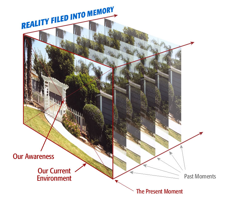 reality filed into memory